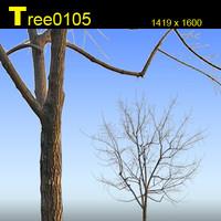 Tree0105.zip