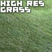 High Res Grass Lawn Texture