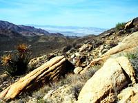 Mojave Photos 7