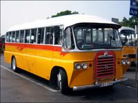 Maltese vintage bus - Bedford