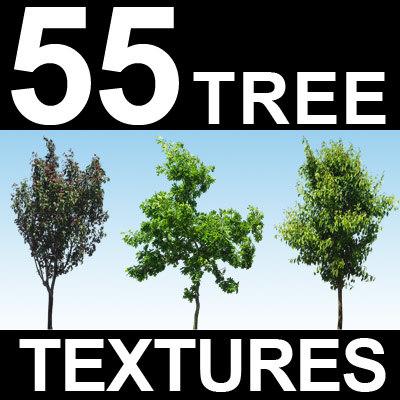55-Tree-Textures-MASTER.jpg