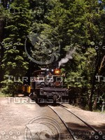 Roaring Camp Railroads - Locomotive Shay
