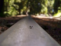 Roaring Camp Railroads - Little World