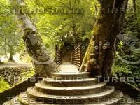Stair Bridge at Alumrock Park