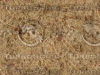 Dead_Grass_Earth_Tileable.jpg