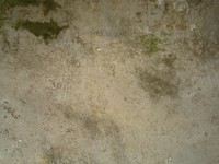 Green Dirt on Floor.JPG