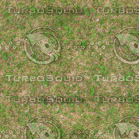 Medium resolution Grass ground 03