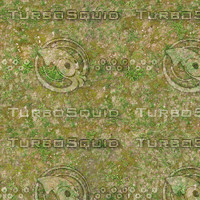 Medium resolution Grass ground 02