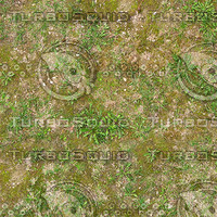 Very High resolution Grass ground 02