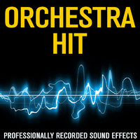 Orchestra_HIT