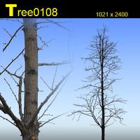 Tree0108.zip