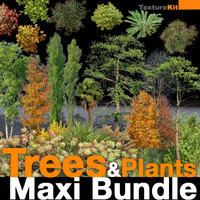 Trees & Plants Maxi Bundle
