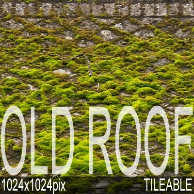 moss_roof01_pre1.jpg