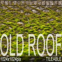 1024x1024 Old Roof moss_roof01A.jpg