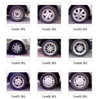 16_Tyre_map.zip