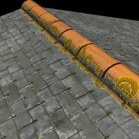 Slate Shingles Roof  High Resolution.jpg