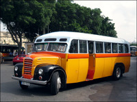 Maltese vintage bus - Dodge