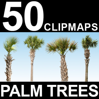 50-Palm-Tree-Textures-MASTER.jpg