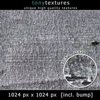 Bark Texture 006 - High Res