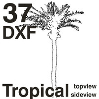 DXF Tropical Set
