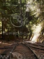 Roaring Camp Railroads - The Upper Junction