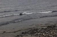 lakeshore2.JPG
