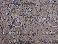 Desert-Floor_0414.png