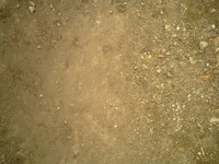 Dirt0101.JPG