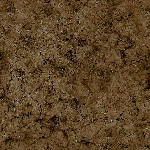 Texture Bmp Dirt Tileable