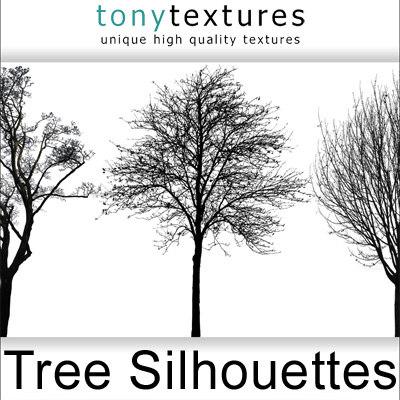 TreeSilhouettes-A.jpg