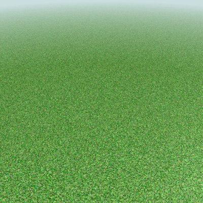 Vorschau_grass1.jpg