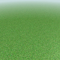 Texture Set Grass