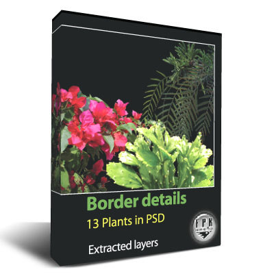 box_plants.jpg