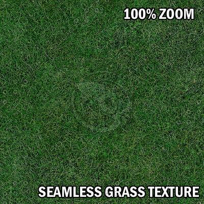 gass01_zoom.jpg