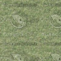 grass02.png