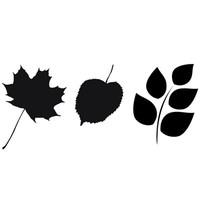 leafs.zip