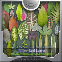 World Matters, Photo-Real Leaves