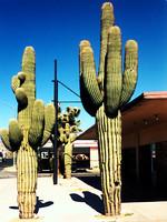 Mojave Photos 8