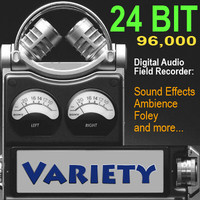 Hi-Fi Variety Sound Effects