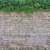 DLRUS_Wall_153_G_TH