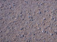 Desert-Floor_0408.png
