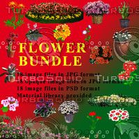Flower Bundle