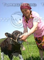 The old woman with bull