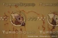 High Quality Grunge/Dirt maps