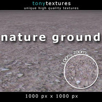 Nature Ground Texture 01