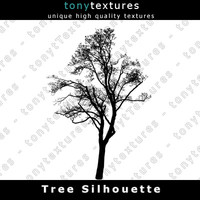 Tree Silhouette 006 - High Res