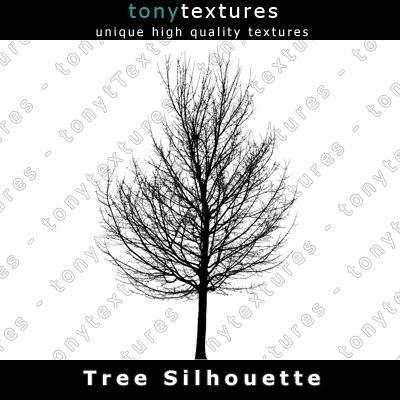 TreeSilhouettes11-A.jpg