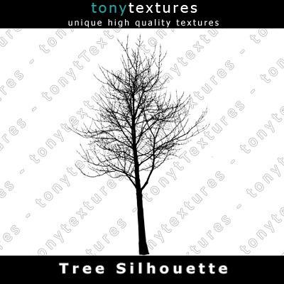 TreeSilhouettes12-A.jpg
