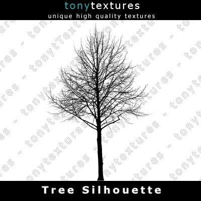 TreeSilhouettes21-A.jpg