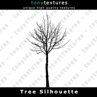 Tree Silhouette 024 - High Res